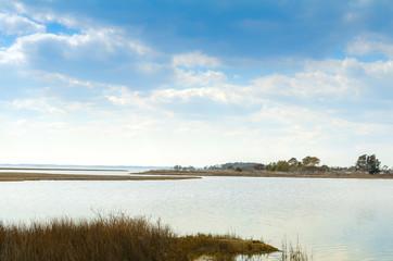 Beautiful marsh scenery of Assateague Island National Seashore in Maryland, along a barrier island in the Atlantic ocean