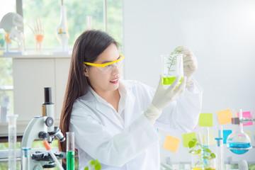 Beautiful Asian scientist warking in lab