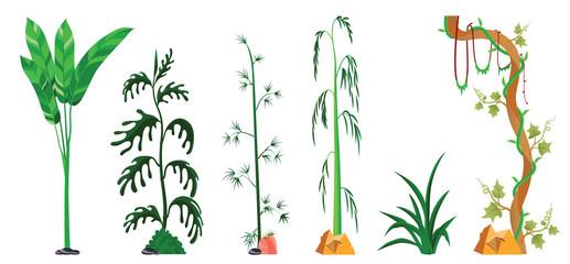vine, tree, plants sets isolated on white background. Vector illustration