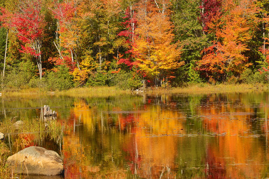 Fall colors along the Androscoggin River in Milan, New Hampshire.