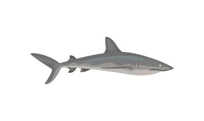 Flat vector icon of gray shark. Predatory fish with big fin on back. Marine fauna. Sea and ocean life theme