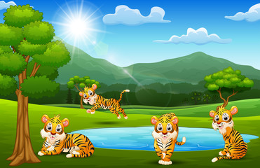 Happy tige group playing next to small pond with mountain scenery