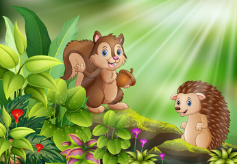 Cartoon of nature scene with squirrel and hedgehog