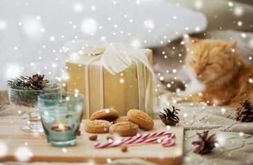 Fototapete - hygge and christmas concept - gift, oatmeal cookies and red tabby cat lying in bed over snow