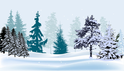 blue winter now forest illustration