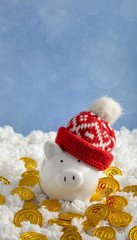Christmas piggy bank in a hat with coins with copy space