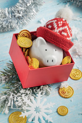 Christmas piggy bank in a hat in red box