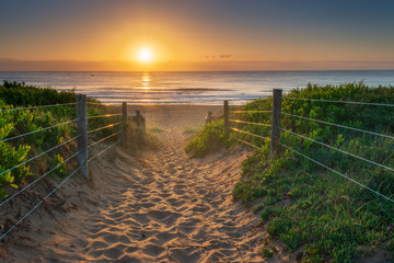 Sunrise at Palm beach, Australia. Sandy path to the iconic Northern Beach of Sydney.