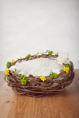 Newborn nest with spring flowers