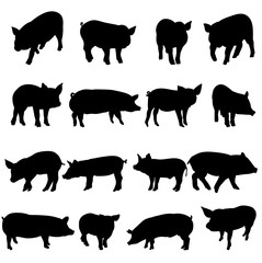 a collection of silhouettes of a pig