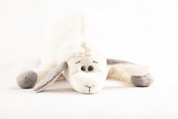 plush toy isolated on white