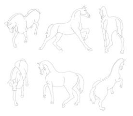 cheval, animal, illustration, mouvement, tracé, dessin,  silhouette, poney, vecteur, chien, dessin animé, mammifère,