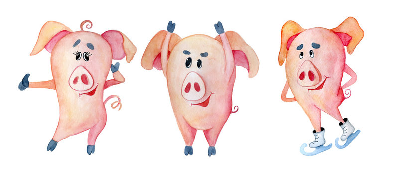 Cute Christmas pigs. Symbol Chinese New Year. Watercolor illustration