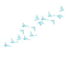 vector, isolated, blue watercolor silhouette of flocks of birds