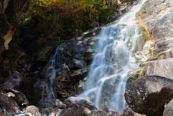 日本 / 長野県 / 南木曽 / 観光地 / 田立の滝 / 川 / 滝のイメージ