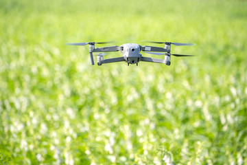 A navigating drone is tracing the farm to monitor the growth of sesame crops in the morning, Technology 4.0 concept