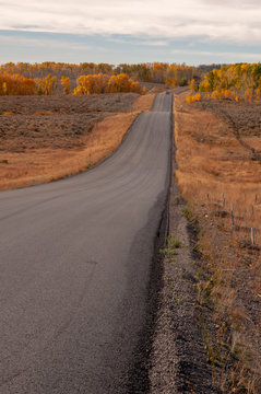 Lonely highway lined with a fence and fall forest of trees in the background, Wyoming