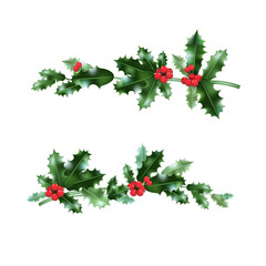 Holly nature branches set