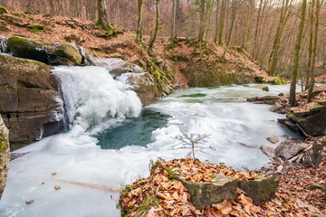 frozen waterfall in forest. snow less winter. naked forest with brown fallen foliage on the ground