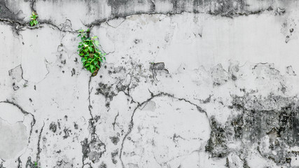 Aged and dirty street wall background