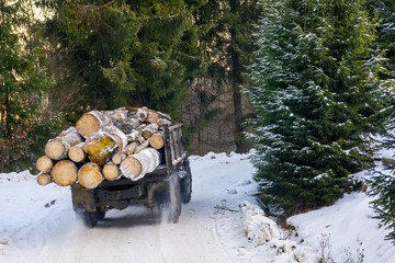 truck transporting wood through forest. dangerous job or illegal cutting concept. road and slope in snow