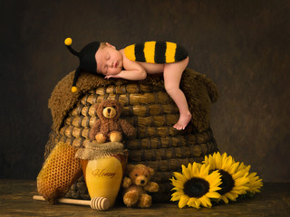 Baby in bee outfit sleeping on a beehive