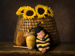 Baby in bee outfit sleeping in beehive