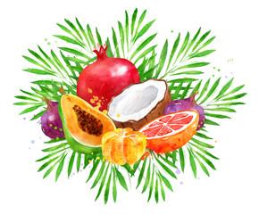 illustration of fresh tropical fruit Bouquet