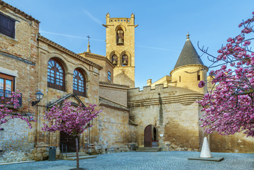 Palace of the Kings of Navarre, Olite, Spain