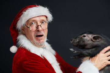 Father Christmas with black little piglet over black background, looking at camera with surprised, astonished, shocked expression in goggle eyes.
