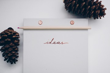 Adhesive note with pine cone on white background