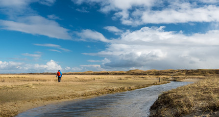 Lone hiker in De Slufter, a nature reserve in Texel, the Netherlands. Wall mural