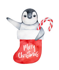 """Small penguin character in decorative traditional red stocking with holiday inscription: """"Merry Christmas"""". Hand drawn watercolour graphic painting on white, colorful art element for decoration."""