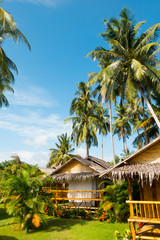 Vertical view of bamboo bungalows and palm trees