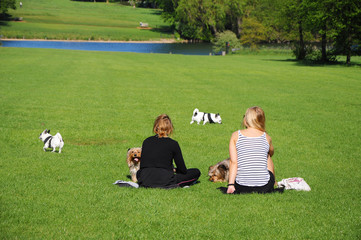 Two womans with dogs rest in the park