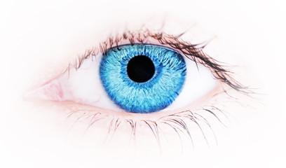 Closeup of the human eye , macro shot .