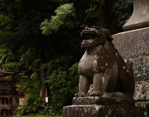 狛犬 神社 神社仏閣 高滝神社