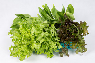 vegetables on basket