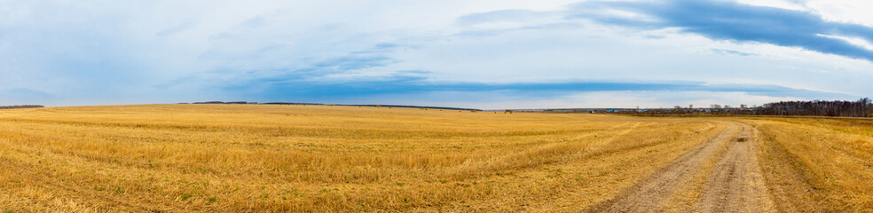 Beautiful panorama landscape of golden field and dark stormy sky. Autumn morning in countryside.