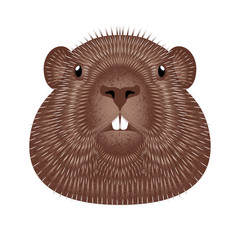 Groundhog Day. Concept National holiday in the USA and Canada. Vector illustration of the face of the animal groundhog. Grunge texture.