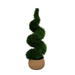 green tree on pot