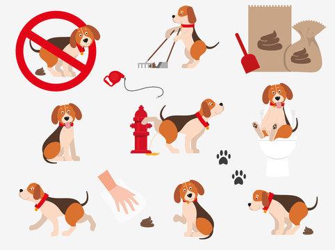 Cartoons, funny pets. Set of information dog icons. Isolated on white background.