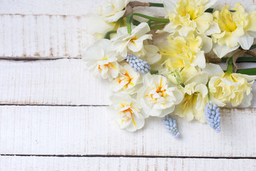 Yellow  daffodils and muscaries