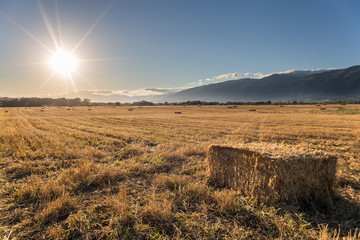 Bales of straw during a sunset