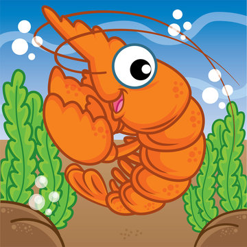 shrimp cartoon, cartoon cute, animal cute