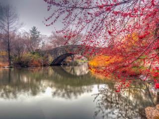 Gapstow Bridge in early spring