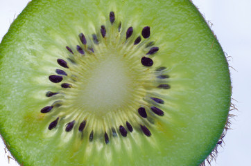 Closeup macro slice of kiwi fruit. Background graphic resources concept.
