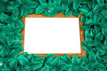 Wooden frame around green leaves on background. Blank for advertising card or invitation.