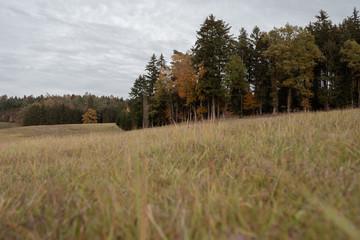 Herbsliche Landschaft in Bayern Hallertau