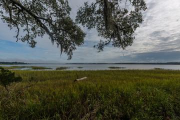 Wadmalaw Island, South Carolina, USA